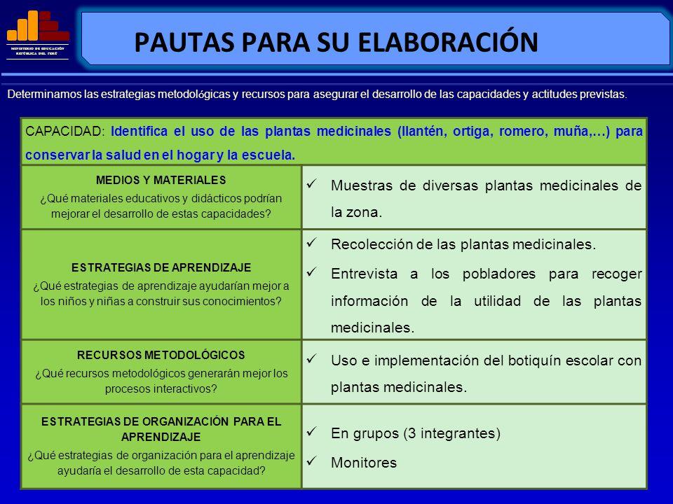 MINISTERIO DE EDUCACIÓN REPÚBLICA DEL PERÚ PAUTAS PARA SU ELABORACIÓN CAPACIDAD: Identifica el uso de las plantas medicinales (llantén, ortiga, romero