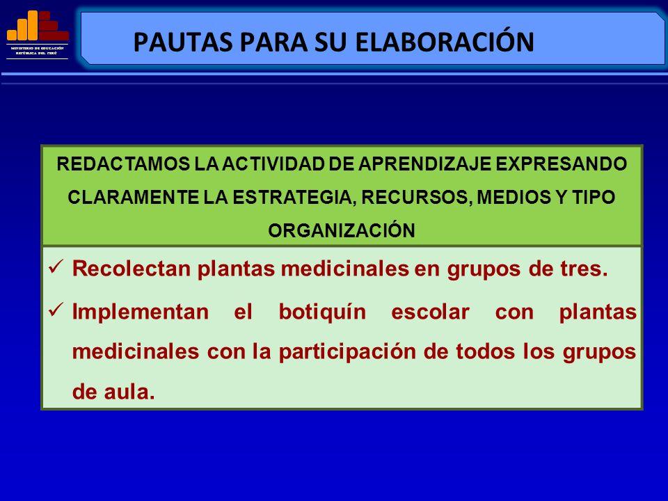 MINISTERIO DE EDUCACIÓN REPÚBLICA DEL PERÚ PAUTAS PARA SU ELABORACIÓN REDACTAMOS LA ACTIVIDAD DE APRENDIZAJE EXPRESANDO CLARAMENTE LA ESTRATEGIA, RECU
