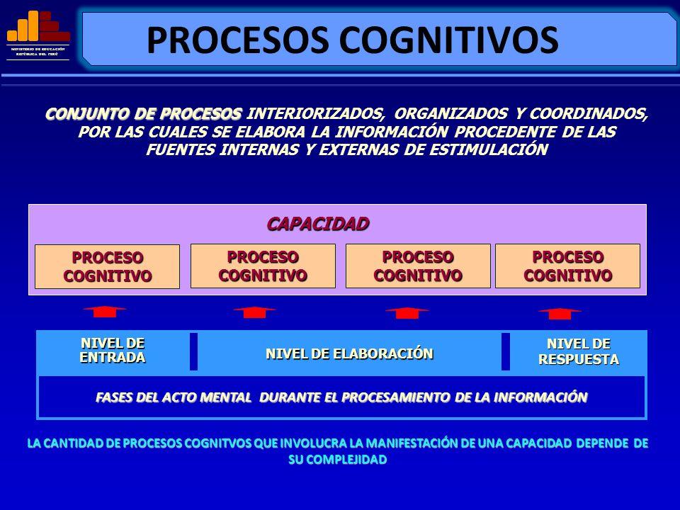 MINISTERIO DE EDUCACIÓN REPÚBLICA DEL PERÚ PROCESOS COGNITIVOS CONJUNTO DE PROCESOS CONJUNTO DE PROCESOS INTERIORIZADOS, ORGANIZADOS Y COORDINADOS, PO