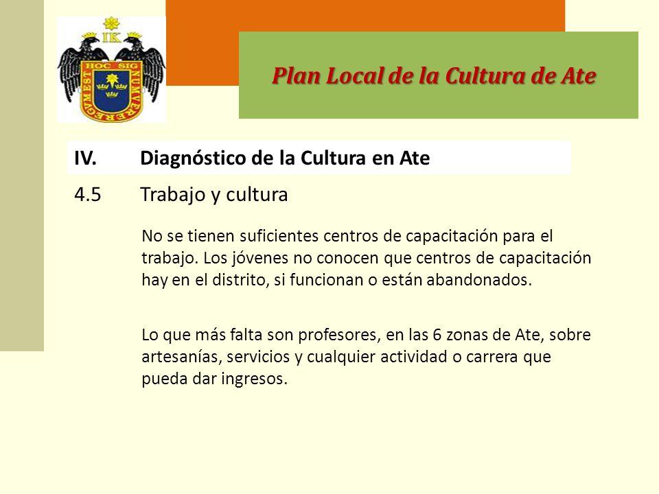 Plan Local de la Cultura de Ate IV.Diagnóstico de la Cultura en Ate No se tienen suficientes centros de capacitación para el trabajo.