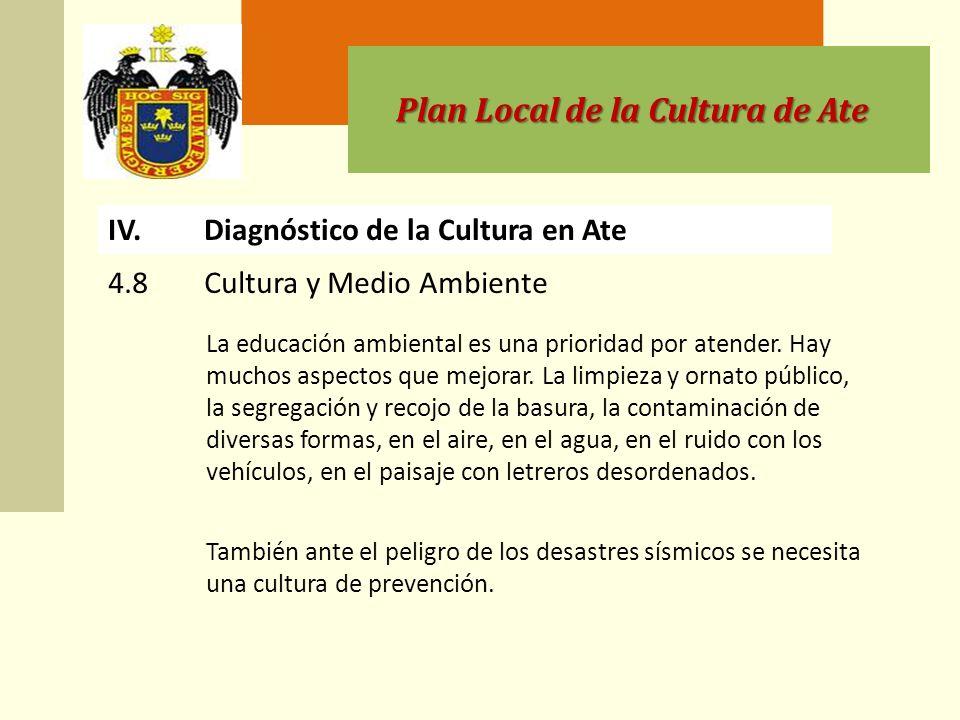 Plan Local de la Cultura de Ate IV.Diagnóstico de la Cultura en Ate La educación ambiental es una prioridad por atender.