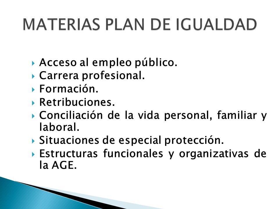 Acceso al empleo público. Carrera profesional. Formación. Retribuciones. Conciliación de la vida personal, familiar y laboral. Situaciones de especial