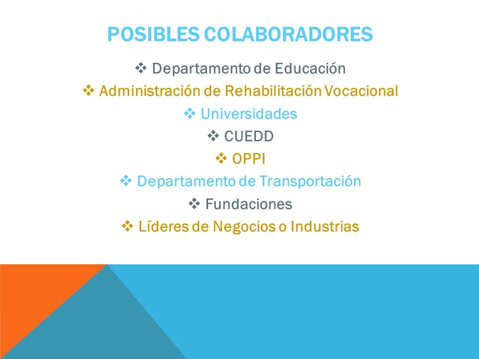POSIBLES COLABORADORES Departamento de Educación Administración de Rehabilitación Vocacional Universidades CUEDD OPPI Departamento de Transportación Fundaciones Líderes de Negocios o Industrias