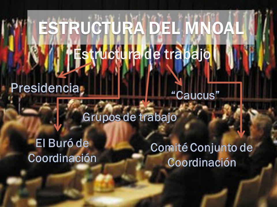 Estructura de trabajo ESTRUCTURA DEL MNOAL