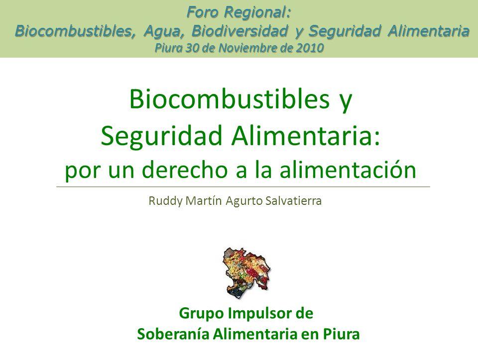 Biocombustibles y Seguridad Alimentaria: por un derecho a la alimentación Grupo Impulsor de Soberanía Alimentaria en Piura Foro Regional: Biocombustibles, Agua, Biodiversidad y Seguridad Alimentaria Biocombustibles, Agua, Biodiversidad y Seguridad Alimentaria Piura 30 de Noviembre de 2010 Ruddy Martín Agurto Salvatierra