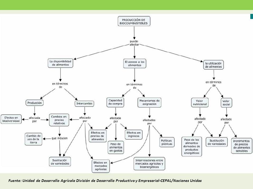 Fuente: Unidad de Desarrollo Agrícola División de Desarrollo Productivo y Empresarial-CEPAL/Naciones Unidas