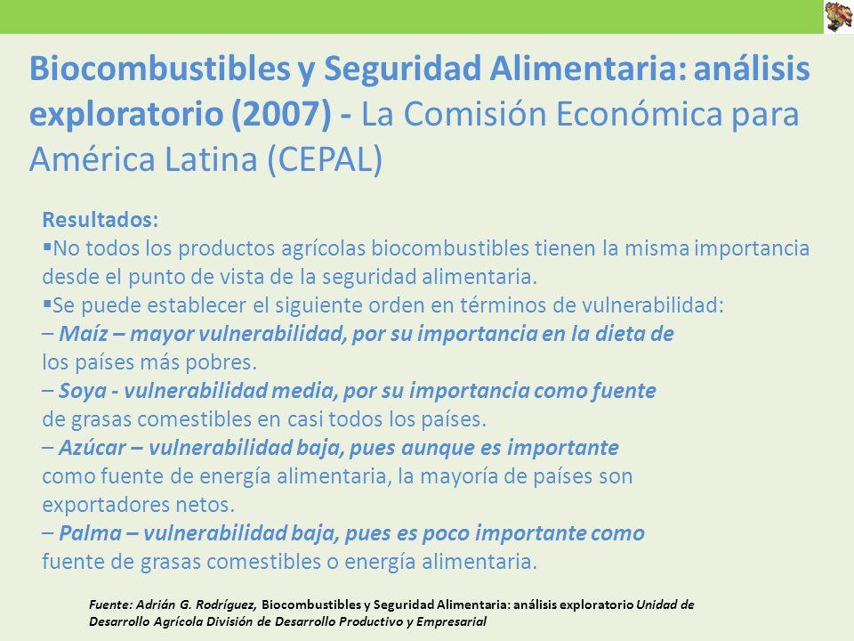 Resultados: No todos los productos agrícolas biocombustibles tienen la misma importancia desde el punto de vista de la seguridad alimentaria.