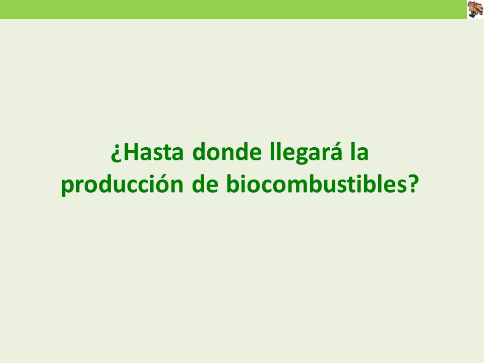 ¿Hasta donde llegará la producción de biocombustibles?