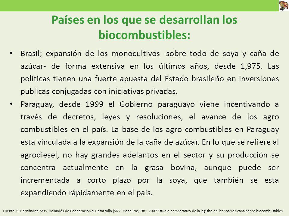 Países en los que se desarrollan los biocombustibles: Brasil; expansión de los monocultivos -sobre todo de soya y caña de azúcar- de forma extensiva en los últimos años, desde 1,975.