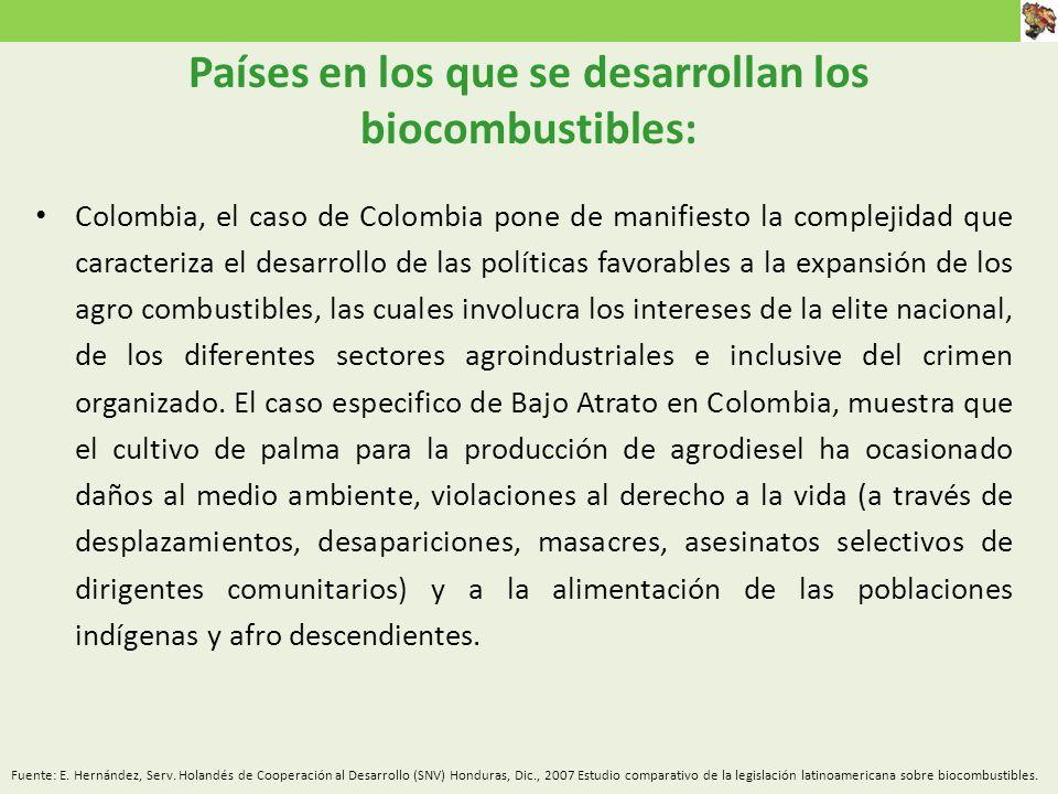 Colombia, el caso de Colombia pone de manifiesto la complejidad que caracteriza el desarrollo de las políticas favorables a la expansión de los agro combustibles, las cuales involucra los intereses de la elite nacional, de los diferentes sectores agroindustriales e inclusive del crimen organizado.