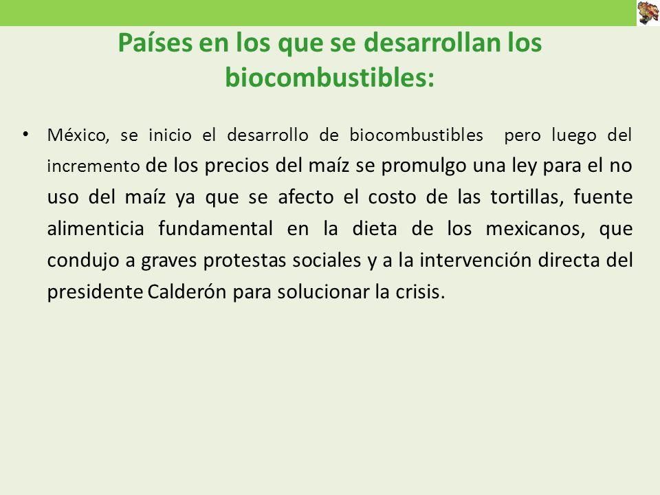 Países en los que se desarrollan los biocombustibles: México, se inicio el desarrollo de biocombustibles pero luego del incremento de los precios del maíz se promulgo una ley para el no uso del maíz ya que se afecto el costo de las tortillas, fuente alimenticia fundamental en la dieta de los mexicanos, que condujo a graves protestas sociales y a la intervención directa del presidente Calderón para solucionar la crisis.