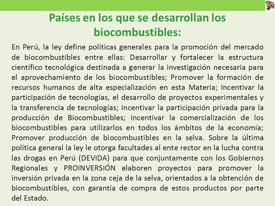 En Perú, la ley define políticas generales para la promoción del mercado de biocombustibles entre ellas: Desarrollar y fortalecer la estructura científico tecnológica destinada a generar la investigación necesaria para el aprovechamiento de los biocombustibles; Promover la formación de recursos humanos de alta especialización en esta Materia; Incentivar la participación de tecnologías, el desarrollo de proyectos experimentales y la transferencia de tecnologías; Incentivar la participación privada para la producción de Biocombustibles; Incentivar la comercialización de los biocombustibles para utilizarlos en todos los ámbitos de la economía; Promover producción de biocombustibles en la selva.