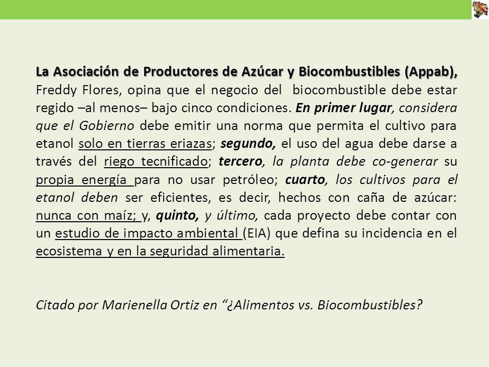 La Asociación de Productores de Azúcar y Biocombustibles (Appab), La Asociación de Productores de Azúcar y Biocombustibles (Appab), Freddy Flores, opina que el negocio del biocombustible debe estar regido –al menos– bajo cinco condiciones.