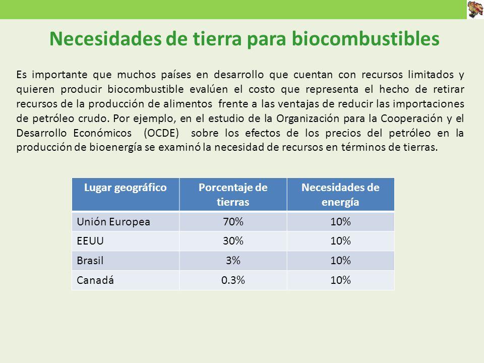 Es importante que muchos países en desarrollo que cuentan con recursos limitados y quieren producir biocombustible evalúen el costo que representa el hecho de retirar recursos de la producción de alimentos frente a las ventajas de reducir las importaciones de petróleo crudo.