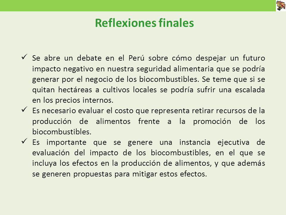 Reflexiones finales Se abre un debate en el Perú sobre cómo despejar un futuro impacto negativo en nuestra seguridad alimentaria que se podría generar por el negocio de los biocombustibles.