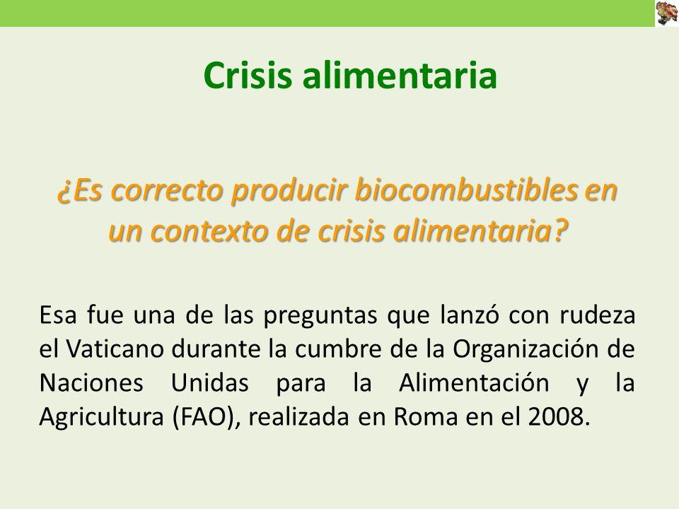 Crisis alimentaria ¿Es correcto producir biocombustibles en un contexto de crisis alimentaria.