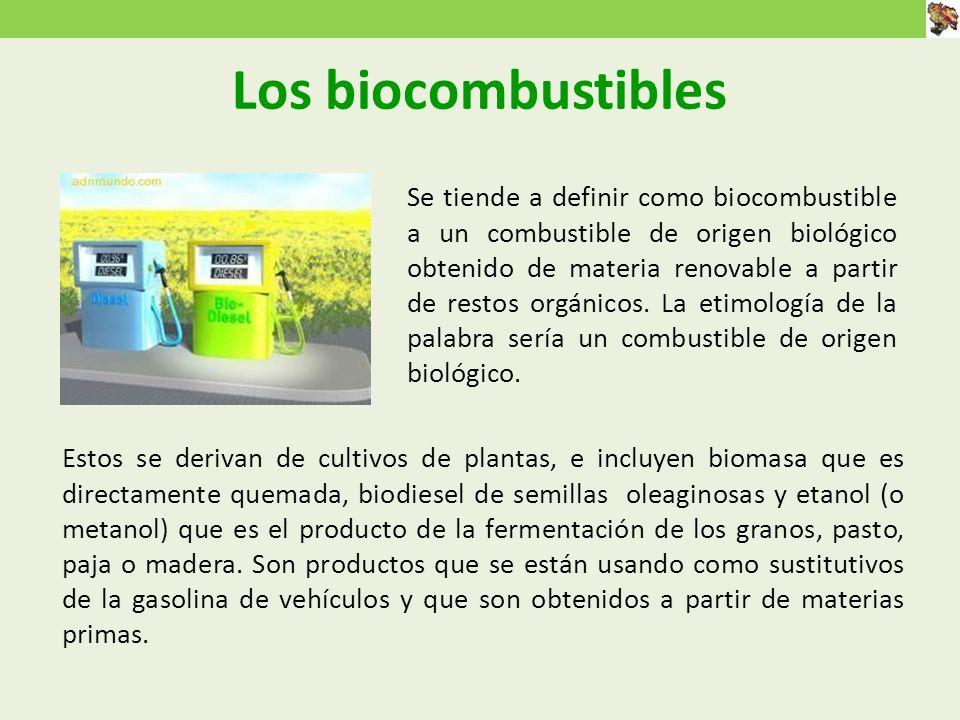 Los biocombustibles Estos se derivan de cultivos de plantas, e incluyen biomasa que es directamente quemada, biodiesel de semillas oleaginosas y etanol (o metanol) que es el producto de la fermentación de los granos, pasto, paja o madera.