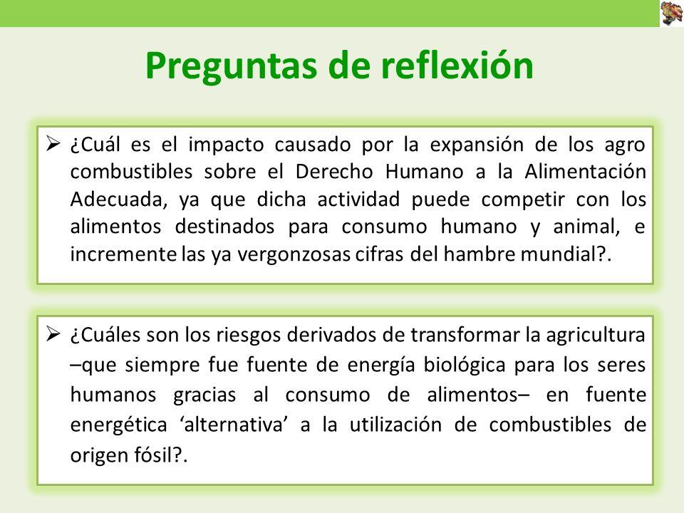 Preguntas de reflexión ¿Cuáles son los riesgos derivados de transformar la agricultura –que siempre fue fuente de energía biológica para los seres humanos gracias al consumo de alimentos– en fuente energética alternativa a la utilización de combustibles de origen fósil?.