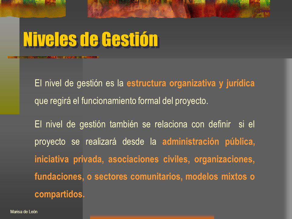 Niveles de Gestión El nivel de gestión es la estructura organizativa y jurídica que regirá el funcionamiento formal del proyecto.