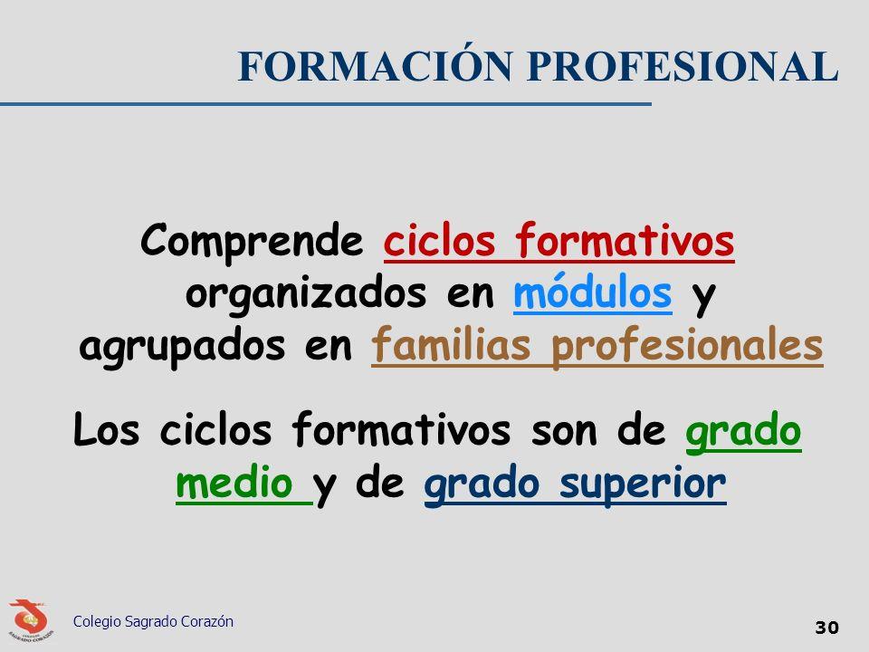 FORMACIÓN PROFESIONAL Comprende ciclos formativos organizados en módulos y agrupados en familias profesionales Los ciclos formativos son de grado medi