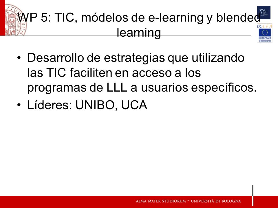 WP 5: TIC, módelos de e-learning y blended learning Desarrollo de estrategias que utilizando las TIC faciliten en acceso a los programas de LLL a usuarios específicos.