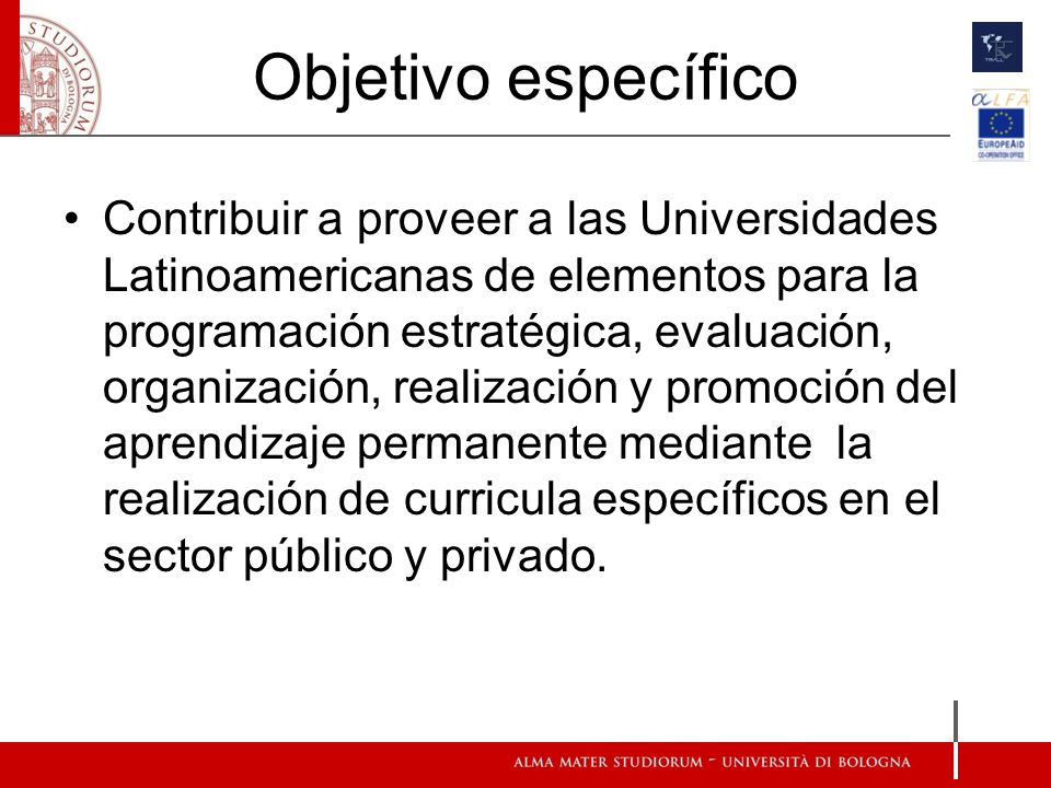 Objetivo específico Contribuir a proveer a las Universidades Latinoamericanas de elementos para la programación estratégica, evaluación, organización, realización y promoción del aprendizaje permanente mediante la realización de curricula específicos en el sector público y privado.