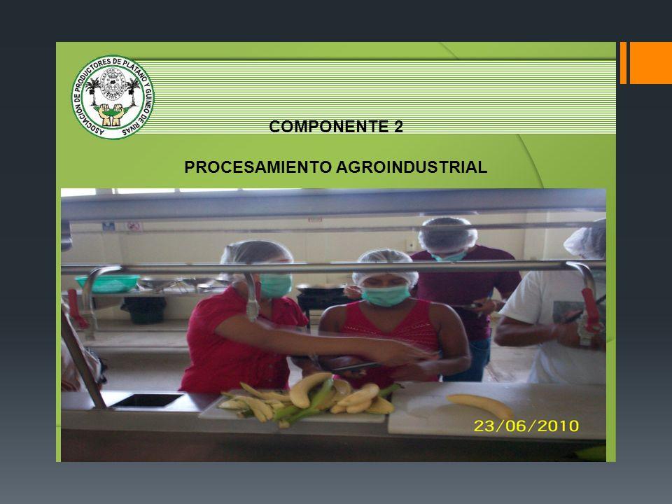 COMPONENTE 2 PROCESAMIENTO AGROINDUSTRIAL