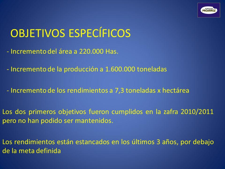 OBJETIVOS ESPECÍFICOS - Incremento del área a 220.000 Has. - Incremento de la producción a 1.600.000 toneladas - Incremento de los rendimientos a 7,3