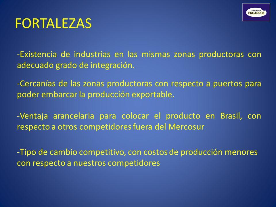 FORTALEZAS -Existencia de industrias en las mismas zonas productoras con adecuado grado de integración. -Ventaja arancelaria para colocar el producto