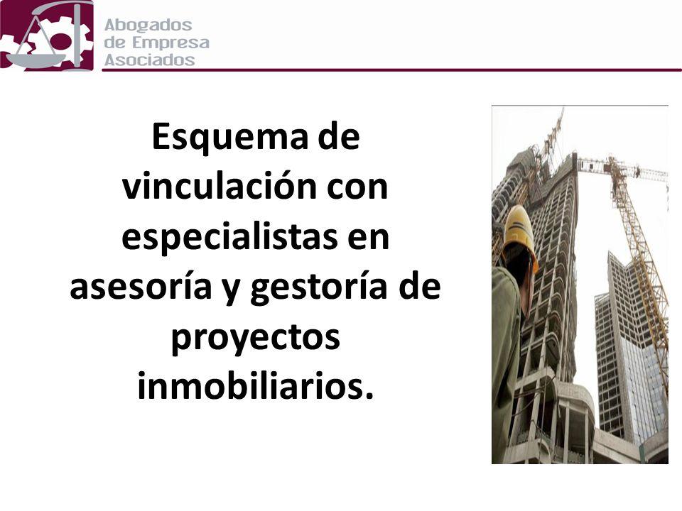 Esquema de vinculación con especialistas en asesoría y gestoría de proyectos inmobiliarios.