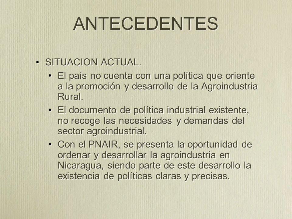 METODOLOGIA Documentos de consultas y trabajo (PNDH, PRORURAL INCLUYENTE, PNAIR, BORRADORES DE POLITICA INDUSTRIAL, POLITICAS ESPECIFICAS PARA RUBROS).