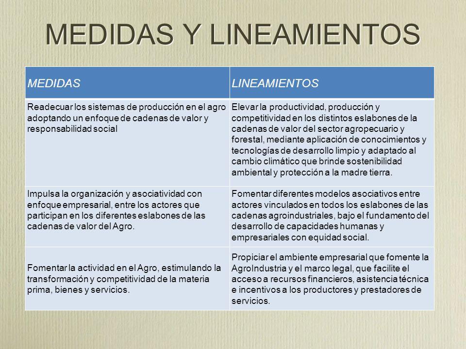 MEDIDAS Y LINEAMIENTOS MEDIDASLINEAMIENTOS Garantizar la participación justa y equitativa de los distintos actores que intervienen en la cadena de Valor.
