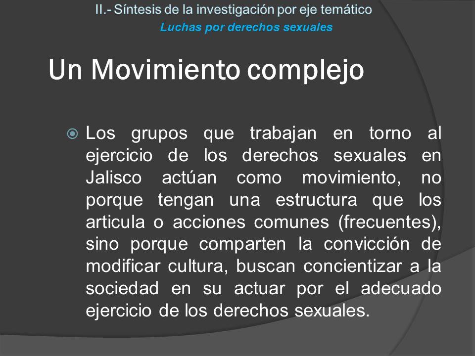 Cuatro amplios ejes de acción Movimiento por los derechos sexuales Diversidad sexual Derechos sexuales Derechos de las mujeres Defensa ante VIH Luchas por derechos sexuales