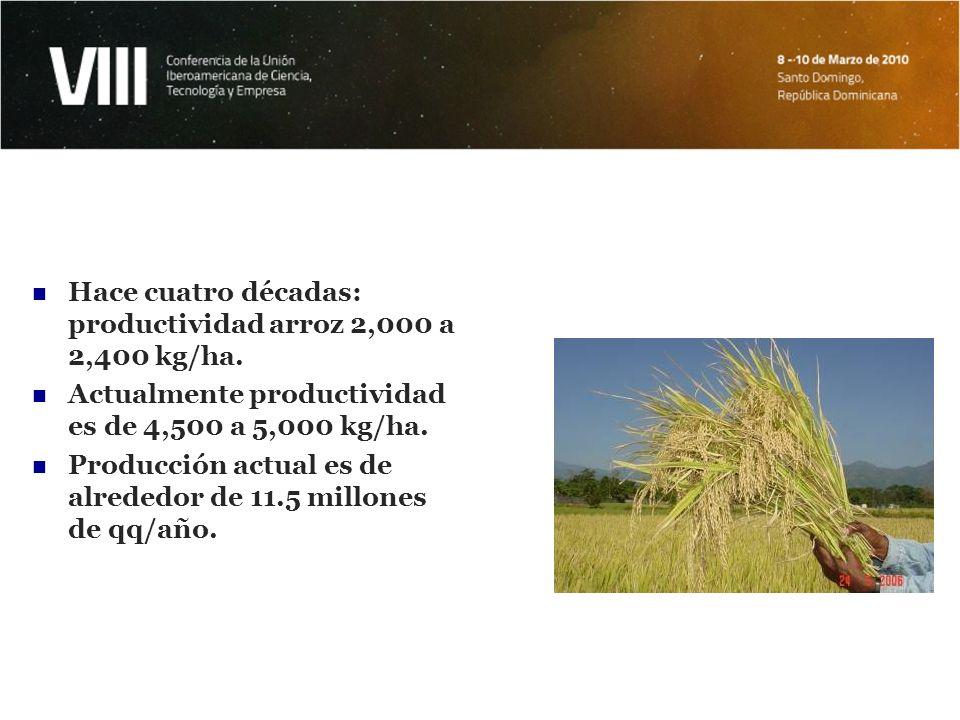 Resultados e impactos en arroz Apoyo continuo al desarrollo de un programa mejoramiento genético de variedades.