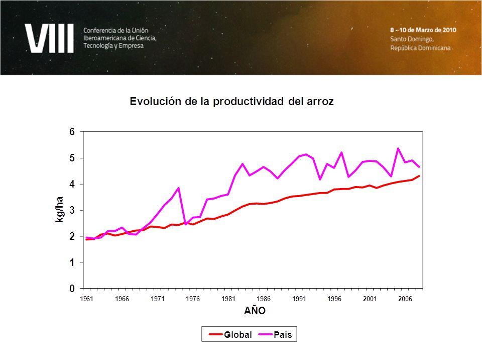 Resultados e impactos en arroz Alrededor de 20-25% del incremento en productividad se relaciona con el uso de variedades mejoradas.