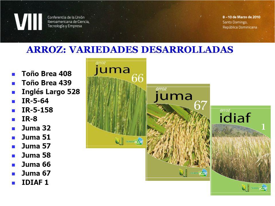 Resultados e impactos en arroz Mejoramiento de eficiencia en los sistemas de producción a través de: Incorporación maquinarias y equipos para la nivelación, siembra mecanizada y cosecha.