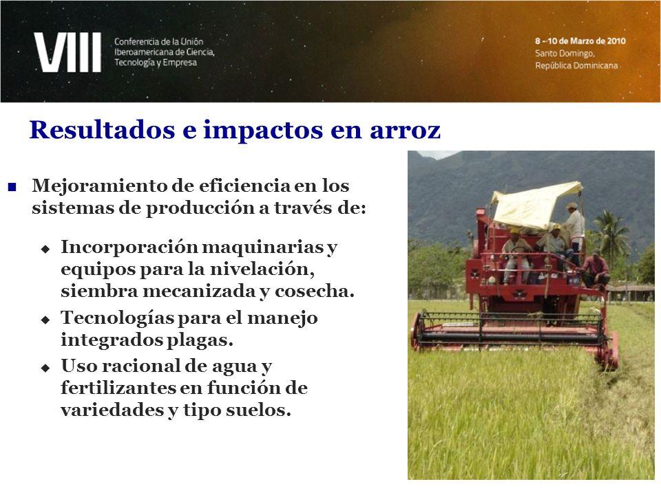 Resultados e impactos en arroz Mejoramiento de eficiencia en los sistemas de producción a través de: Capacitación continua de técnicos y productores.