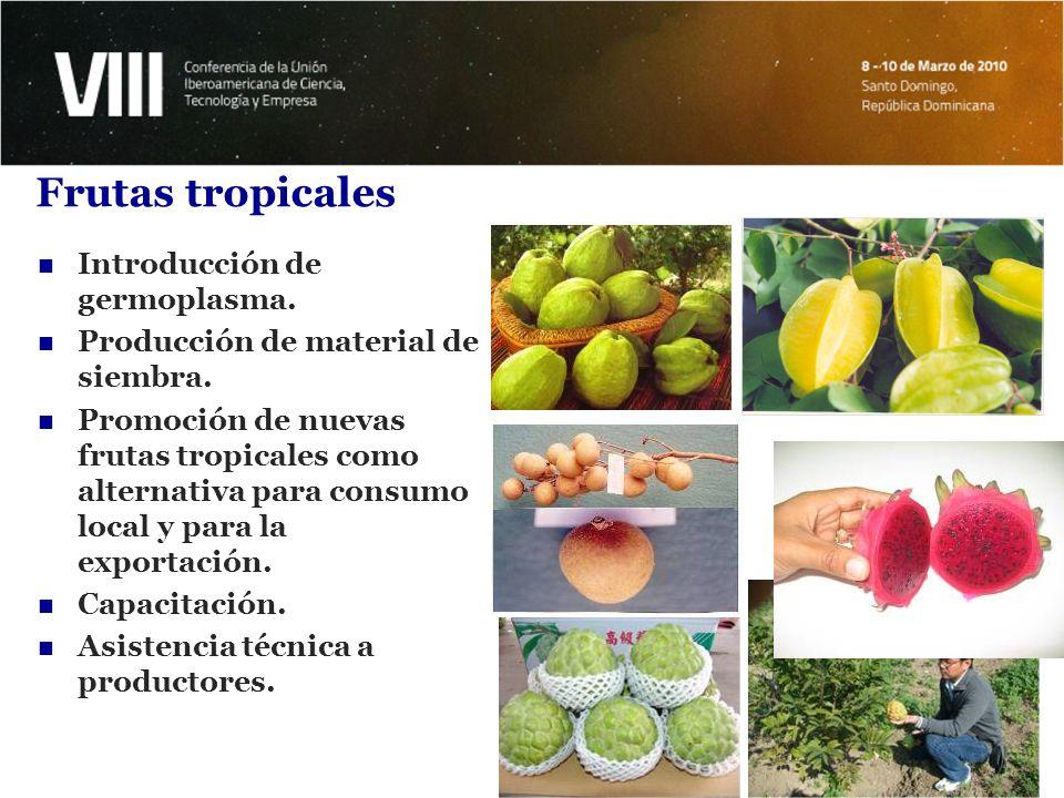Introducción de Bambú Introducción y evaluación de 7 variedades de bambú.