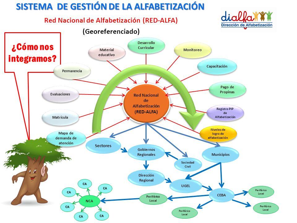 DIGEBA Red Nacional de Alfabetización ( RED-ALFA) Matrícula Evaluaciones Material educativo Capacitación Sociedad Civil Sectores Gobiernos Regionales