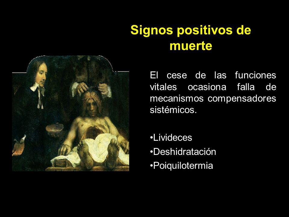 Signos negativos de vida Ausencia de conciencia y respuesta a estímulos Ausencia de respiración Ausencia de latidos cardiacos y tensión arterial