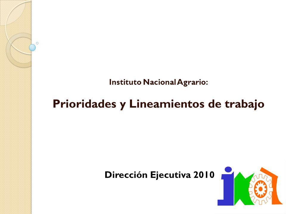 Instituto Nacional Agrario: Prioridades y Lineamientos de trabajo Dirección Ejecutiva 2010