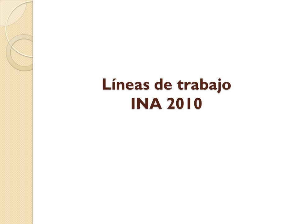 Líneas de trabajo INA 2010