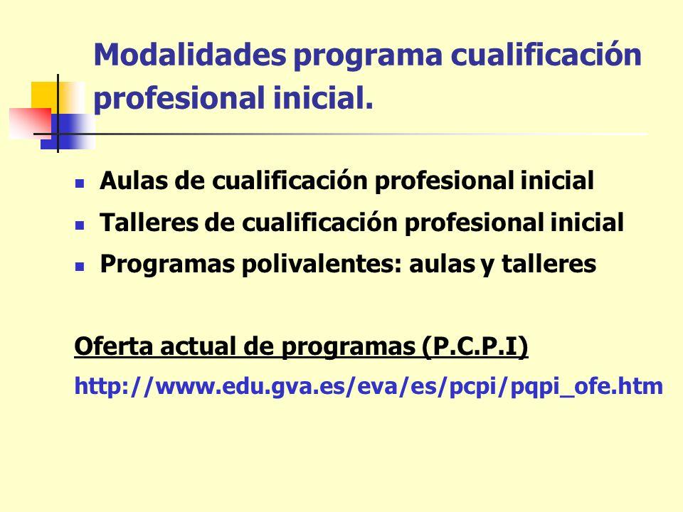 Modalidades programa cualificación profesional inicial. Aulas de cualificación profesional inicial Talleres de cualificación profesional inicial Progr