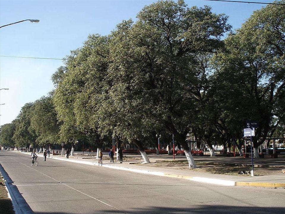 TERRITORIAL LINEAMIENTOS El desarrollo del proyecto abarcará ambas márgenes del Río Salí.