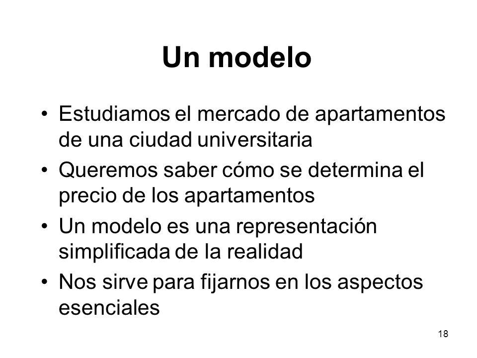 18 Un modelo Estudiamos el mercado de apartamentos de una ciudad universitaria Queremos saber cómo se determina el precio de los apartamentos Un model