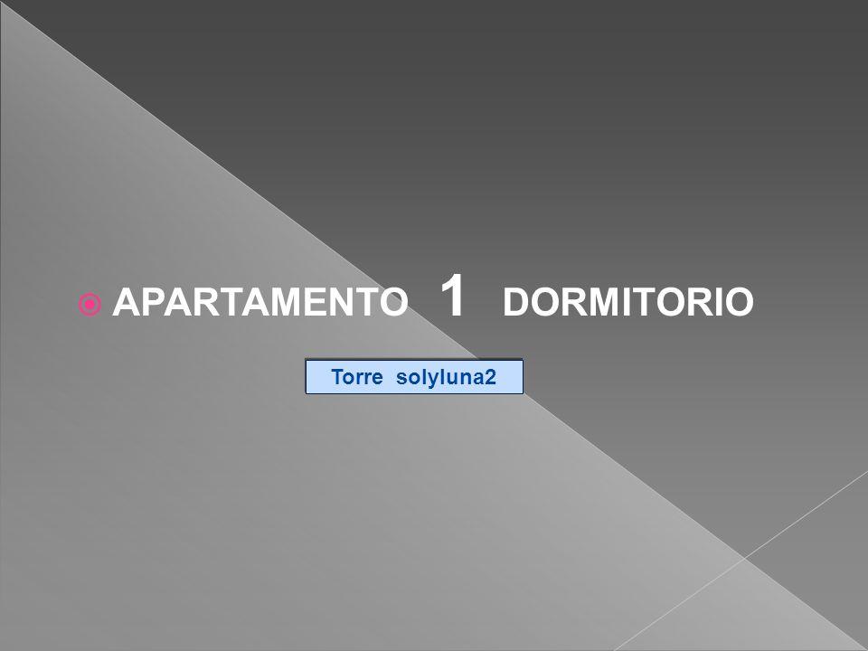 APARTAMENTO 1 DORMITORIO Torre solyluna2 Torre solyluna2