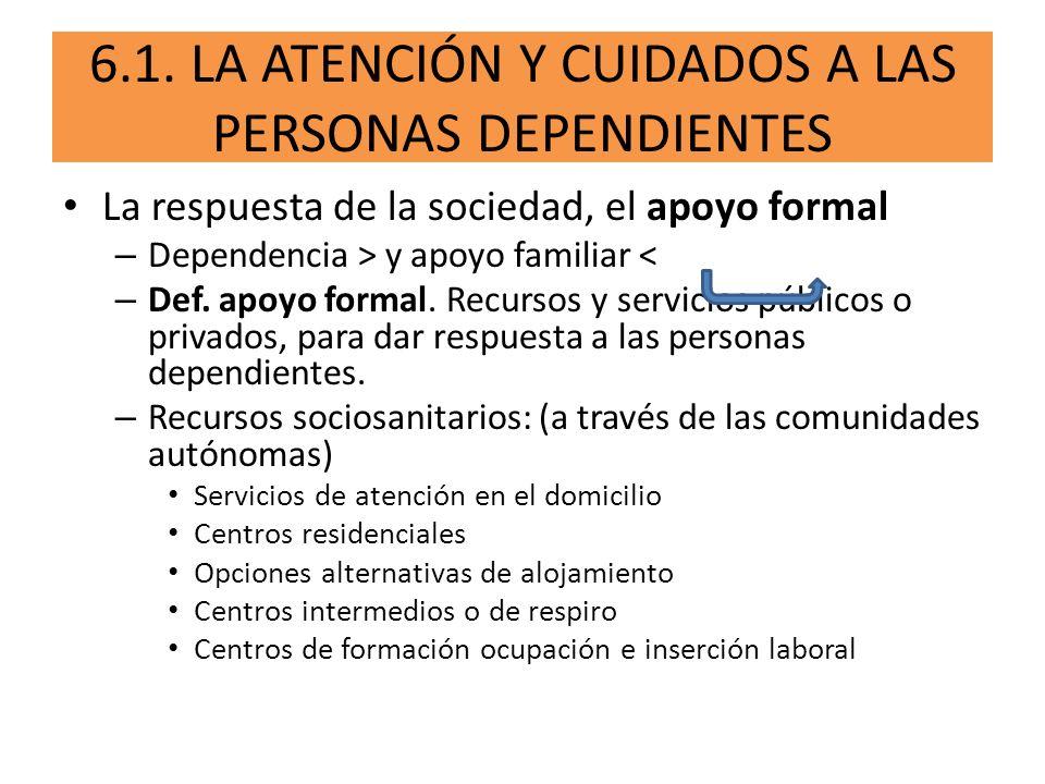 6.2.SERVICIOS DE APOYO EN EL DOMICILIO.