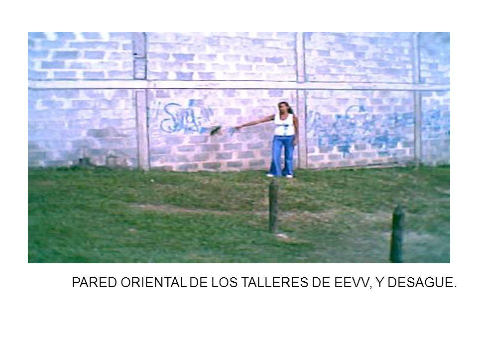 PARED ORIENTAL DE LOS TALLERES DE EEVV, Y DESAGUE.