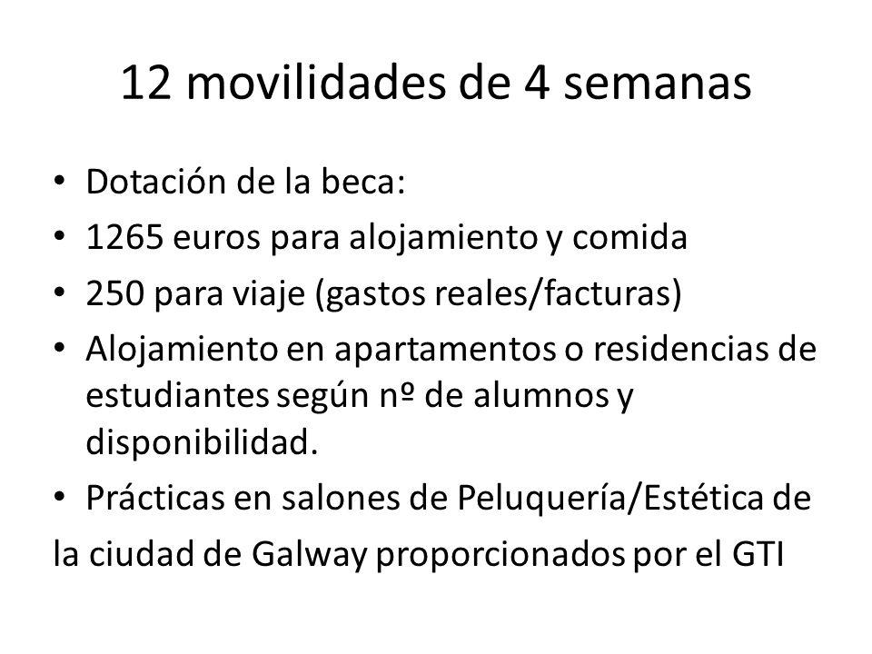 12 movilidades de 4 semanas Dotación de la beca: 1265 euros para alojamiento y comida 250 para viaje (gastos reales/facturas) Alojamiento en apartamentos o residencias de estudiantes según nº de alumnos y disponibilidad.