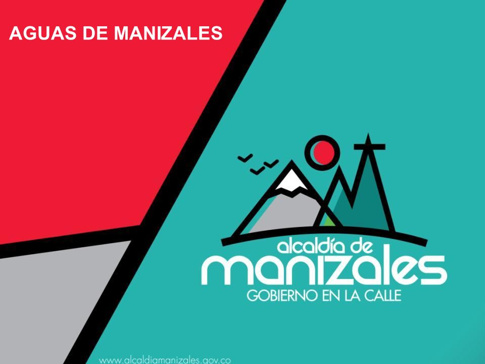 PROPUESTA DE IMPACTO FINAL Nueva Estructura Organizacional en Aguas de Manizales (énfasis técnico).